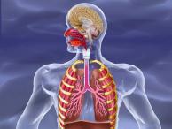 COPD / Atemwegserkrankungen